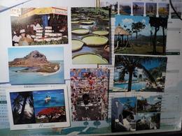 ILE MAURICE. LOT DE 8 CPSM. ANNEES 90 BAZAR DE PORT LOUIS / VISTORIA REGIA / GRAND BASSIN / CASUARINA / GORGE DE LA RIV - Cartes Postales