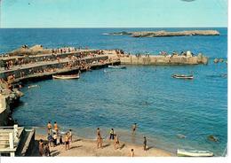 CARTOLINA ALGERIA 1980 - SPIAGGIA DI ALGERI - VIAGGIATA DA ALGERI ALL'ITALIA(TRIESTE) - Algeri