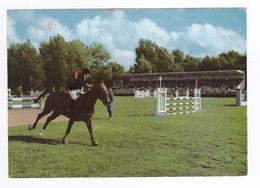 62 Le Touquet Paris Plage N°11 Galop Au Concours Hippique En 1968 Cheval Cavalier Horse Racing Saut Obstacles Tribunes - Le Touquet