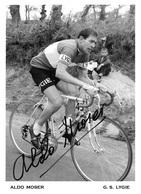 PHOTO RIGIDE, HAUTE CALITÉ, ALDO MOSER TEAM LYGIE 1964 FORMAT 18 X 25 - Cycling
