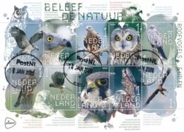 Nederland - 2020 - Velletje Beleef De Natuur - Roofvogels En Uilen - Echt Gebruikt - 2013-... (Willem-Alexander)