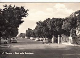 S. Vincenzo - Viale Della Principessa - Livorno