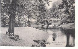 Schaerbeek - Parc Josaphat - Schaerbeek - Schaarbeek