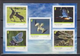 Isle Of Man 2019 (AVE 215) - Northern Gannet And Common Kingfisher . Self-adhesive Stamps - Verzamelingen, Voorwerpen & Reeksen