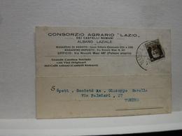ALBANO LAZIALE   --ROMA   --DISTILLERIA - VINO -UVA -- ACCESSORI  - CONSORZIO AGRARIO LAZIO - Vigne