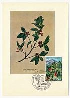 ESPAGNE - 4 Cartes Maximum - Nature ... - Tarjetas Máxima