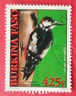 50 Burkina Faso Faune Oiseau Pic Ponctué - Climbing Birds
