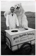 """Photo Originale Déguisement D'Ours Polaire & Eisbär Avec Marchand De Glaces - """" Wilbo """" Qualitäts-Speise-Eis Hersteller - Anonyme Personen"""