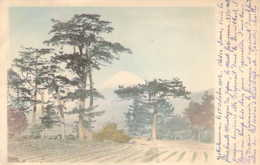JAPAN JAPON Landscape Towards Mount FUJI Paysages Vers Le Mont Fuji En 1903 - Other