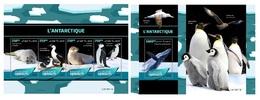 Djibouti. 2019 Antarctica. Penguins.  (0613) OFFICIAL ISSUE - Pinguine
