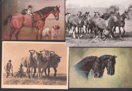 Lot Karten Mit Pferden, Horse, Künstlerkarte Nr. 771 M. Munk Wien, J. P. Junghans - Pflügen, Warmblutherde - Chevaux