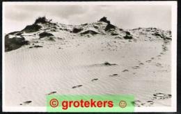 HOENDERLOO Zandverstuiving In De Hooge Veluwe 1948 - Nederland