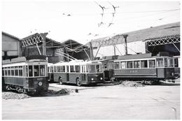 Tramway De Perpignan (66) Motrices N°17 Et N°33  & Trolleybus Au Dépôt Vers 1950. - Tramways
