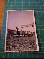 150664 VECCHIA FOTO ORIGINALE FERROVIA NORD ITALIA - Treni