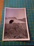 150672 VECCHIA FOTO ORIGINALE FERROVIA NORD ITALIA - Treni