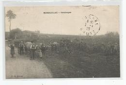 24 Dordogne Bergerac Vignoble Delpérier Frères Monbazillac Vendanges 1929 , Cliché Astruc - Bergerac