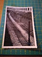 150675 VECCHIA FOTO ORIGINALE FERROVIA NORD ITALIA - Treni