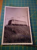 150688 VECCHIA FOTO ORIGINALE FERROVIA NORD ITALIA - Treni