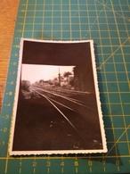 150692 VECCHIA FOTO ORIGINALE FERROVIA NORD ITALIA - Treni