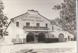 CPSM 84   MORMOIRON LA CAVE COOPERATIVE 1929 LES ROCHES BLANCHES - Mormoiron