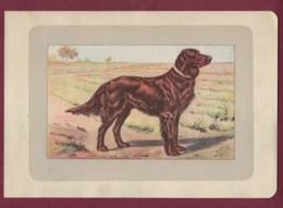 300120B - PHOTOGRAVURE EN COULEURS 1907 De MAHLER Peintre Animalier - Chasse Chien - LE SETTER IRLANDAIS - Litografia