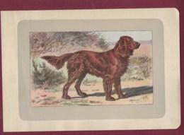 300120B - PHOTOGRAVURE EN COULEURS 1907 De MAHLER Peintre Animalier - Chasse Chien - L' EPAGNEUL ALLEMAND - Litografia