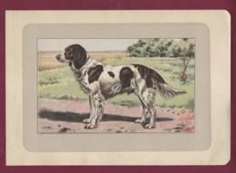 300120B - PHOTOGRAVURE EN COULEURS 1907 De MAHLER Peintre Animalier - Chasse Chien - EPAGNEUL FRANCAIS - Litografia