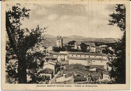 BISACCIA - NELL' ALTA IRPINIA - VEDUTA DA MEZZOGIORNO - Avellino