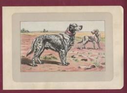 300120B - PHOTOGRAVURE EN COULEURS 1907 De MAHLER Peintre Animalier - Chasse Chien - LE SETTER ANGLAIS - Litografia