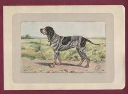 300120B - PHOTOGRAVURE EN COULEURS 1907 De MAHLER Peintre Animalier - Chasse Chien - LE BRAQUE DU WURTEMBERG - Litografia