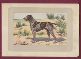 300120B - PHOTOGRAVURE EN COULEURS 1907 De MAHLER Peintre Animalier - Chasse Chien - LE BRAQUE ALLEMAND - Litografia