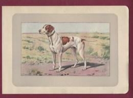 300120B - PHOTOGRAVURE EN COULEURS 1907 De MAHLER Peintre Animalier - Chasse Chien - LE BRAQUE SAINT GERMAIN - Litografia