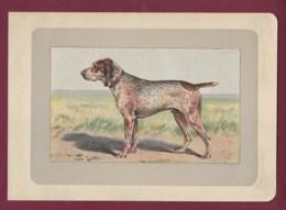 300120B - PHOTOGRAVURE EN COULEURS 1907 De MAHLER Peintre Animalier - Chasse Chien - LE BRAQUE CHARLES X - Litografia