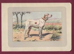 300120B - PHOTOGRAVURE EN COULEURS 1907 De MAHLER Peintre Animalier - Chasse Chien - LE BRAQUE DE L' ARIEGE - Litografia