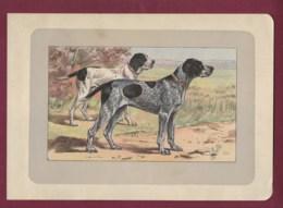300120B - PHOTOGRAVURE EN COULEURS 1907 De MAHLER Peintre Animalier - Chasse Chien - LE BRAQUE BLEU D' AUVERGNE - Litografia