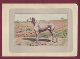 300120B - PHOTOGRAVURE EN COULEURS 1907 De MAHLER Peintre Animalier - Chasse Chien - LE BRAQUE DU BOURBONNAIS - Litografia