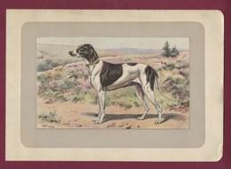 300120B - PHOTOGRAVURE EN COULEURS 1907 De MAHLER Peintre Animalier - Chasse Chien - LE BRAQUE DUPUY - Litografia