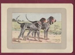300120B - PHOTOGRAVURE EN COULEURS 1907 De MAHLER Peintre Animalier - Chasse Chien - CHIEN BLEU DE GASCOGNE - Litografia