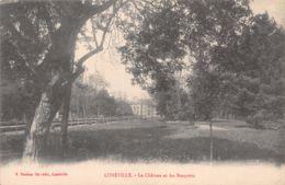 54-LUNEVILLE-N°T1041-C/0101 - Luneville