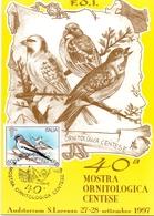 MOSTRA ORNITOLOGICA FERRARA CENTO  MAXIMUM  POST CARD  (GENN201405) - Passeri