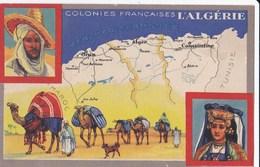 Carte Vers 1920 Les Colonies Françaises : ALGERIE (publicité Lion Noir) - Altri