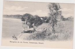 Margens Do Rio Purus,amazonas,brazil  (pas Courant) - Brazil