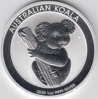 ONZA DE PLATA AUSTRALIA 2020 KOALA - Australia