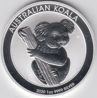 ONZA DE PLATA AUSTRALIA 2020 KOALA - Australie