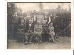 Photo De Famille 3 Ou 4  Générations + Les Chiens  Anonymes - Personnes Anonymes