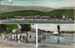 1911 - SAUBERSDORF  St.Egyden AmSteinfeld, Gute Zustand, 2 Scan - Neunkirchen