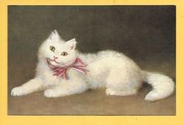 Gatti - Piccolo Formato - Non Viaggiata - Gatti