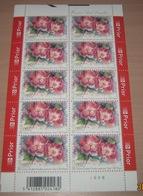 """België 3385** Gentse Floraliën VI - Rozen (With Scent Of Flowers , Met Bloemengeur/Aroma) Rosa """"Old Master"""" Pl 6 - Kleinbögen"""