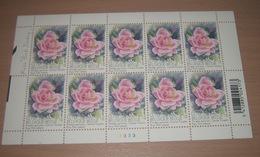 """België 3384** Gentse Floraliën VI - Rozen (With Scent Of Flowers , Met Bloemengeur/Aroma) Rosa """"Pink Iceberg"""" Pl 3 - Kleinbögen"""