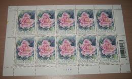 """België 3384** Gentse Floraliën VI - Rozen (With Scent Of Flowers , Met Bloemengeur/Aroma) Rosa """"Pink Iceberg"""" Pl 4 - Kleinbögen"""